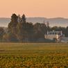 Oenotourisme Loire