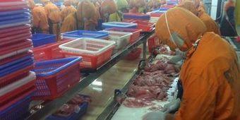 Poisson d'élevage chinois: enquête sur les risques sanitaires | Toxique, soyons vigilant ! | Scoop.it