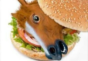 Horse Meat Found In Halal Burgers | The Indigenous Uprising of the British Isles | Scoop.it