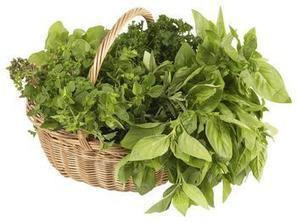 Articles for Eating Good and Nutrition: Fresh Herbs, Dried Herbs and Lower Blood Pressure | Health and Fitness | Scoop.it
