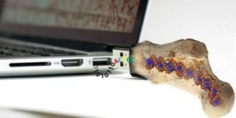 A DNA hard drive has been built that can store data for 1 MILLION years   Science technology and reaserch   Scoop.it