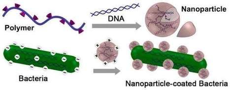 vacuna contra nanopartículas diabetes 1