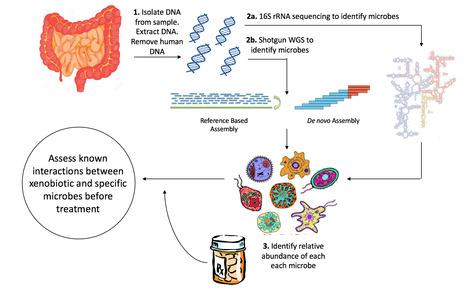 Drug Metabolism and Pharmacokinetics or DMPK St