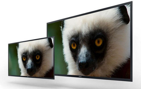 Sony unveils 30-and 56-inch professional 4K OLED monitor prototypes, shipping in May | Gear, Gadgets & Gizmos | Scoop.it