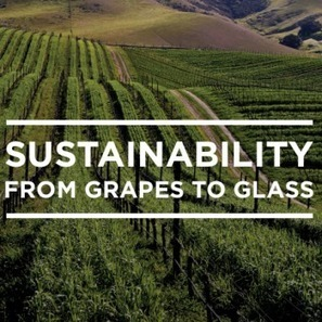 California adopting sustainable winemaking | Grande Passione | Scoop.it