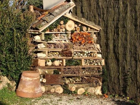 Hôtels à insectes : Avec quoi ? Pour qui ? by Défi-éco | pour mon jardin | Scoop.it