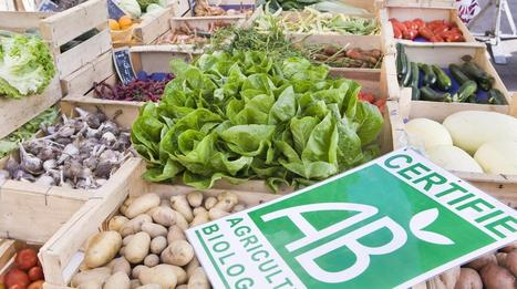 Le marché du bio se démocratise en France et les prix baissent | Chuchoteuse d'Alternatives | Scoop.it