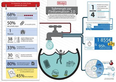 Infographie - Submergés par l'information 2.0 ? | Time to Learn | Scoop.it