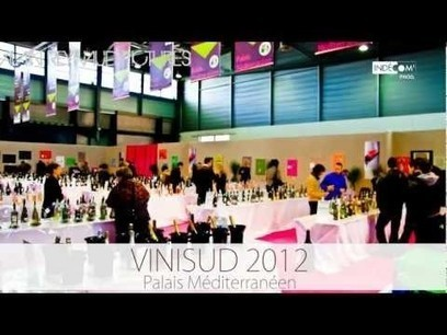 Timelapse à Vinisud 2012 by Alain Reynaud | Vinisud 2012 on and off | Scoop.it