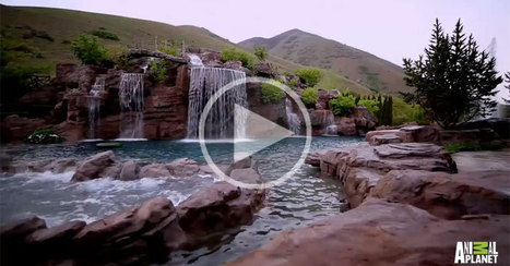A $2 Million Backyard Pool You Can Scuba Dive In | Xposed | Scoop.it