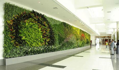 Birmingham Unveils Largest Green Wall in U.S. Airport | Landscape Creative Inspiration | Scoop.it
