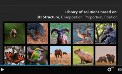 biomimicry: build on what works | Business as an Agent of World Benefit | Scoop.it