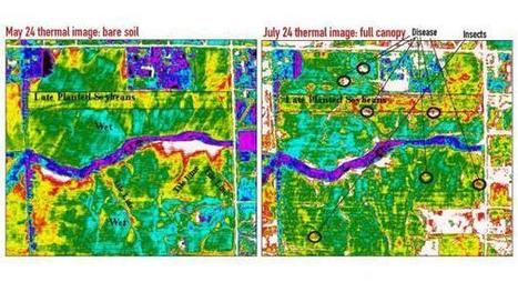 Detect corn, soybean crop stress with thermal images and maps | Soybeans content from Corn and Soybean Digest | Geoflorestas | Scoop.it