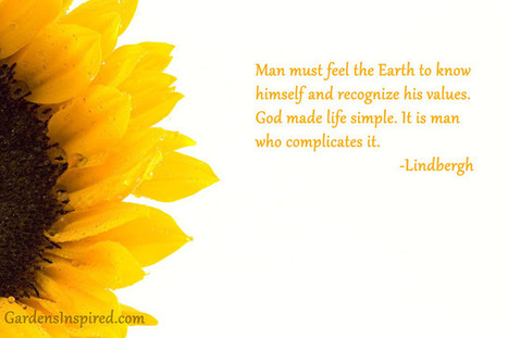 Quote by Lindbergh | The Muse | Scoop.it