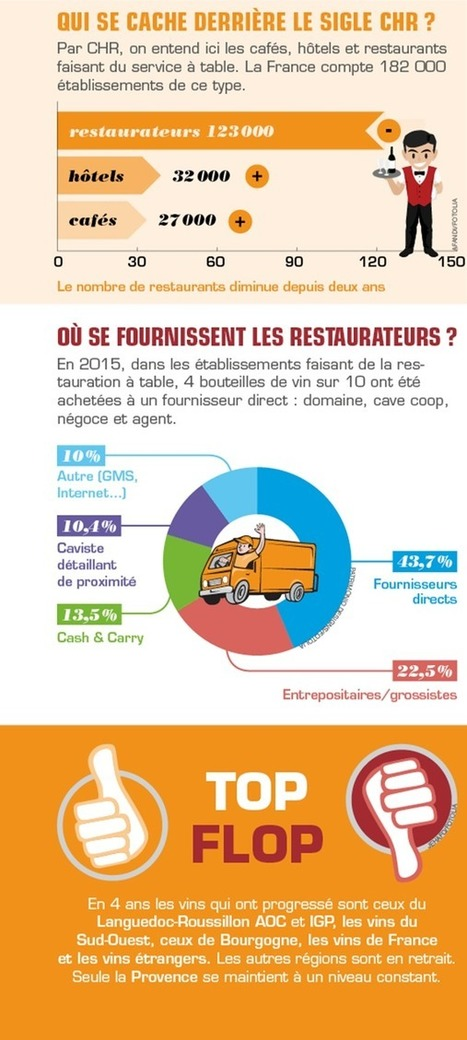 Le vin et la restauration (Activer) | SemioFood | Scoop.it