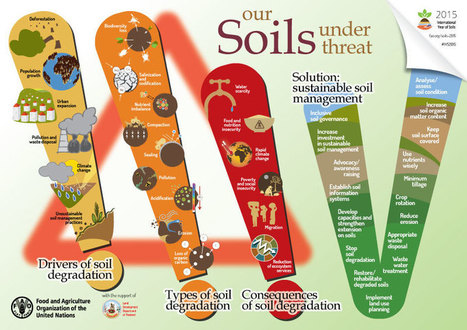 Our soils under threat | geography | Scoop.it