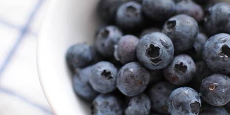 7 Reasons to Add Blueberries to Your Diet - Huffington Post | Nutrition and Diabetes | Scoop.it