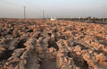 Bahrain history slowly rises from sands | ancient history | Scoop.it