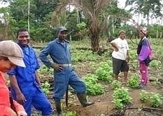 Quelque chose change au sein des agricultures familiales : des jeunes se disent fiers de s'installer en agriculture | Questions de développement ... | Scoop.it