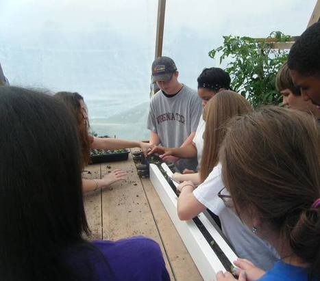 How To Empower Youth With W Farm: Be Like Lee - Bright Agrotech | Vertical Aquaponics | Scoop.it