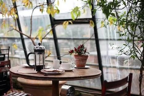 Best Organic Coffee Brands: Top Ten Reviews | Organic Farming | Scoop.it
