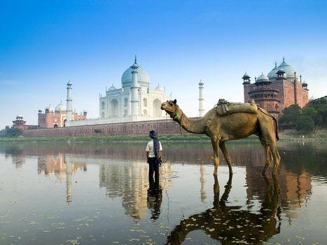 India: Taj Mahal | Wicked! | Scoop.it