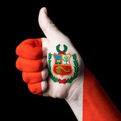 Perú es el séptimo país con más usuarios de internet en Latinoamérica | Negocios&MarketingDigital | Scoop.it