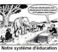 L'iPad, un outil compensatoire des troubles d'apprentissage ? | TUICE_Université_Secondaire | Scoop.it