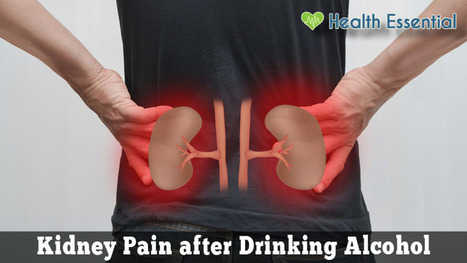 Kidney Pain After Drinking Alcohol Causes And