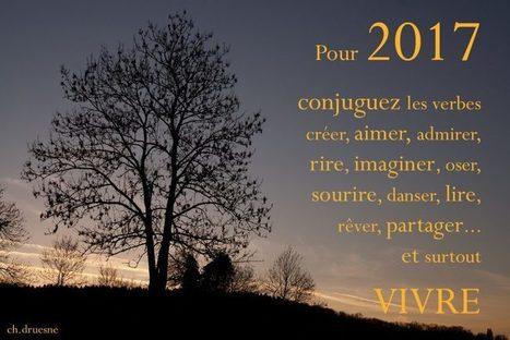 Bonne année 2017 | Ca m'interpelle... | Scoop.it