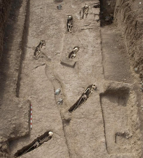 Oldest cemetery of African slaves found in Canary Islands | Archaeology & Archaeological News | Scoop.it