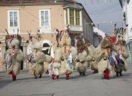 European Capital of Culture in Ptuj: Kurent's wedding | Slovenian Genealogy Research | Scoop.it
