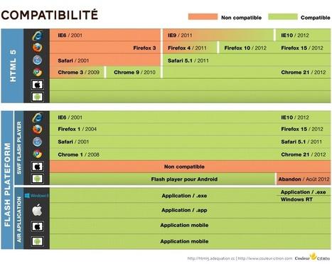 HTML5 vs. Flash, quel choix de technologie effectuer pour ses applications web et mobiles | Toulouse networks | Scoop.it