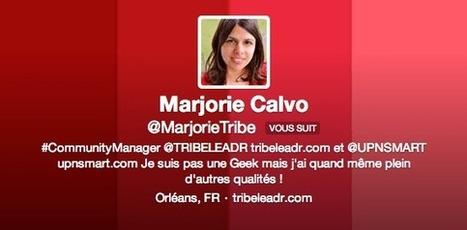 10 astuces pour augmenter le nombre de vos followers sur Twitter ! [Infographie] | La com des PME dynamiques | Scoop.it