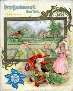 A Bumper Crop of Seed Catalogs - Vegetable Gardener | Annie Haven | Haven Brand | Scoop.it