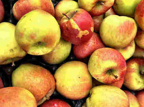 Beneath An Ugly Outside, Marred Fruit May Pack More Nutrition | Vegetarian and Vegan | Scoop.it