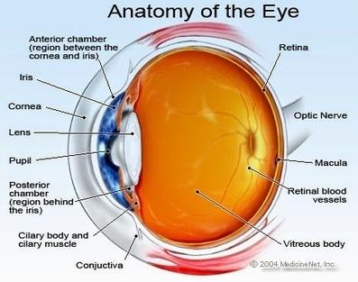 Cataracts – WestOaksUrgentCar | Urgent Care Clinic Houston | Scoop.it