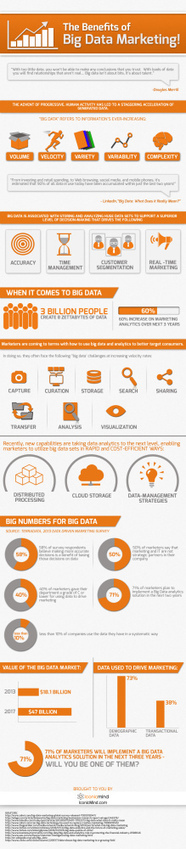 Big Data Marketing: The Benefits - Infographic | Social Media Marketing | Scoop.it