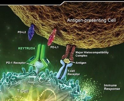 Interferon vs. clinical trial
