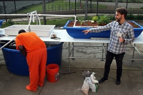 USA - Why So Many Prisons are breaking into the Aquaponics scene | Aquaponics in Action | Scoop.it