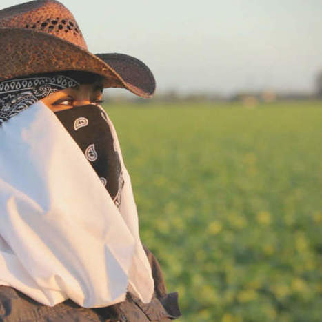 """""""Rape in the Fields"""" Investigation : The High Cost of Putting Food On Our Table   Sustainable Communities   Scoop.it"""