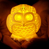 The Stelliform Owl Kickstarter project