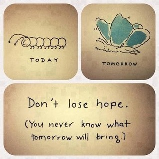Don' lose hope... | Quote for Thought | Scoop.it