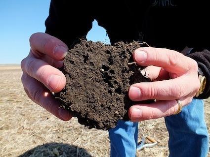 Are We Heading Toward Peak Fertilizer? | The Barley Mow | Scoop.it