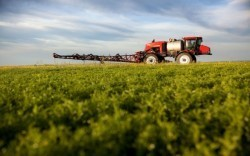 More Proof that Pesticides are Having Detrimental Effects on Children | Lethbridge Chiropractic Care for Family, Personal or Business Wellness | Scoop.it