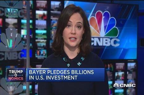 Bayer, Monsanto pledge US R&D spending, jobs after merger | Grain du Coteau : News ( corn maize ethanol DDG soybean soymeal wheat livestock beef pigs canadian dollar) | Scoop.it