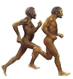 Les premiers pas de l'homme | Aux origines | Scoop.it
