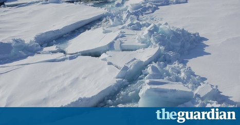 Arctic ice melt could trigger uncontrollable climate change at global level - The Guardian | Développement durable et efficacité énergétique | Scoop.it