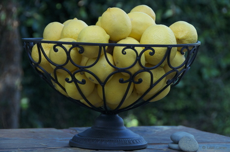 Lemons: Culinary and Non-Culinary Uses | Health and Nutrition | Scoop.it