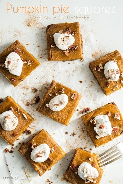 Vegan Pumpkin Pie Squares with Gluten-Free Graham Cracker Crust — Oh She Glows | My Vegan recipes | Scoop.it